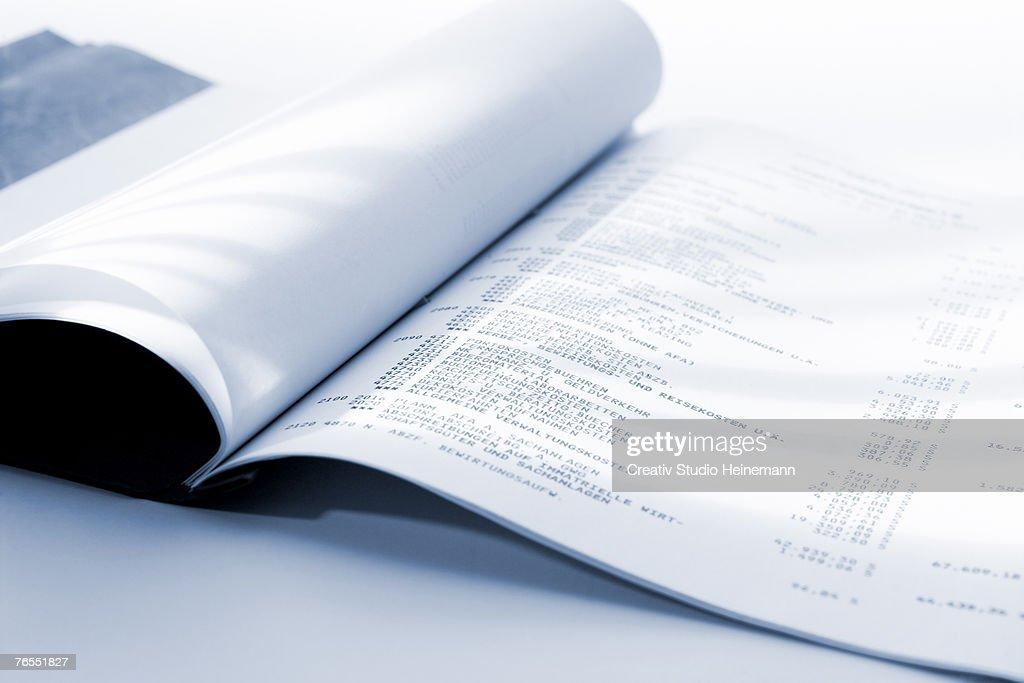 Ledger book, close-up : Stock Photo