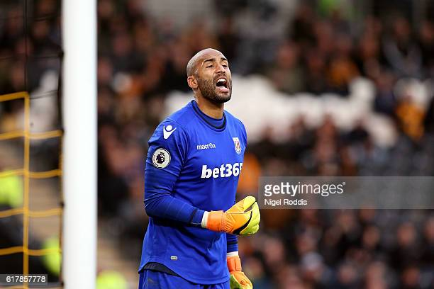 Lee Grant of Stoke City during the Premier League match between Hull City and Stoke City at KC Stadium on October 22 2016 in Hull England