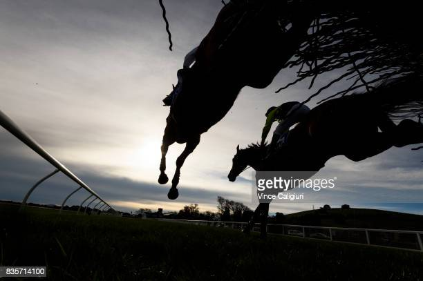Lee Horner riding Trouble Bound jumps alongside John Allen riding The Narcissest in Race 5 Open Steeplchase during The Grand National Steeple Day on...