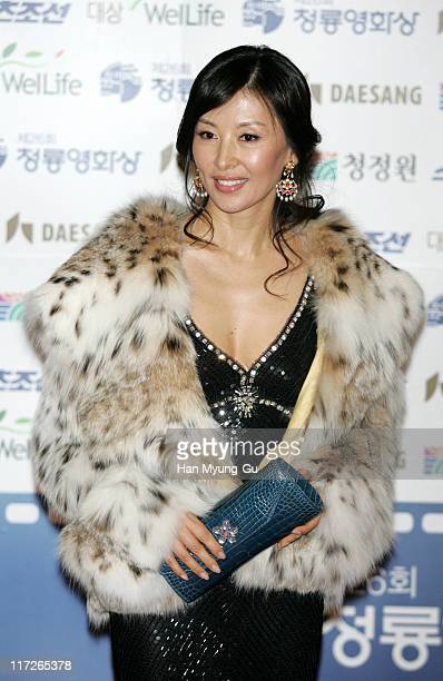 Lee Mi-Sook during 26th Annual Blue Dragon Film Awards - Arrivals at Youido, KBS Hall in Seoul, South, South Korea.