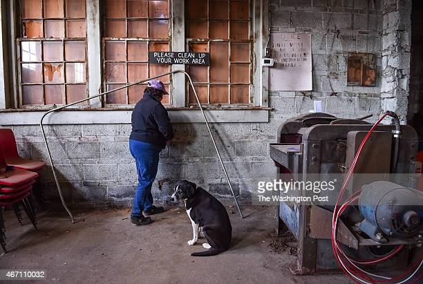 Lee Spiegel pulls nails from the wall in what was a former school shop as her mixed breed named Hopscotch sits by her side on January 22 2015 in...