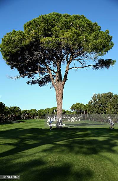 Lee Westwood of England lays his second shot on the 13th hole from behind a tree during the completion of the first round of the Turkish Airlines...