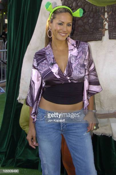 Leeann Tweeden during 'Shrek 2' Los Angeles Premiere Green Carpet at Mann Village Theatre in Westwood California United States