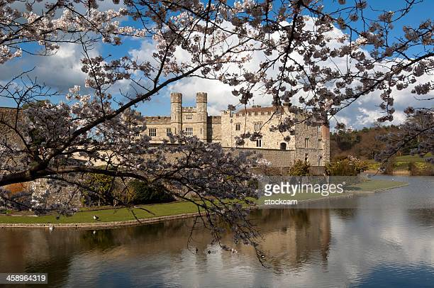 leeds castle - moat stock pictures, royalty-free photos & images