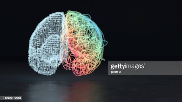 left and right brain hemisphere - expertise stock pictures, royalty-free photos & images