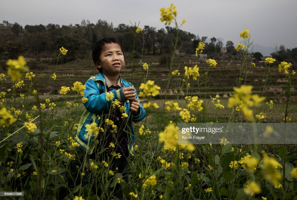 Luo Lie, 5, picks flowers as he does chores in the fields with his siblings. Photo by Kevin Frayer/Getty Images