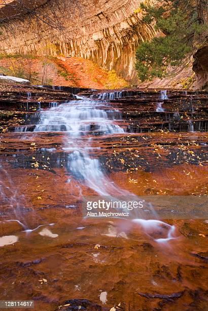 Left Fork of North Creek flowing over red sandstone, Zion National Park, Utah. USA