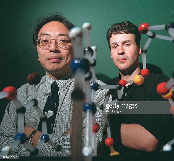 left is Dr LapChee Tsui and right is Dr Stephen Scherer with dna model in foreground Dr LapChee Tsui is president of the Human Genome Organization...