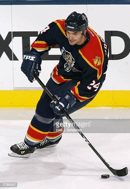 Left wing Darcy Hordichuk of the Florida Panthers stickhandles against the Tampa Bay Lightning during NHL action on November 11, 2003 at the Office...