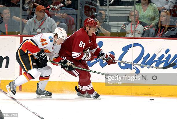 Left wing Marcel Hossa of the Phoenix Coyotes fights for the puck with Dustin Boyd of the Calgary Flames at Jobingcom Arena March 1 2008 in Glendale...