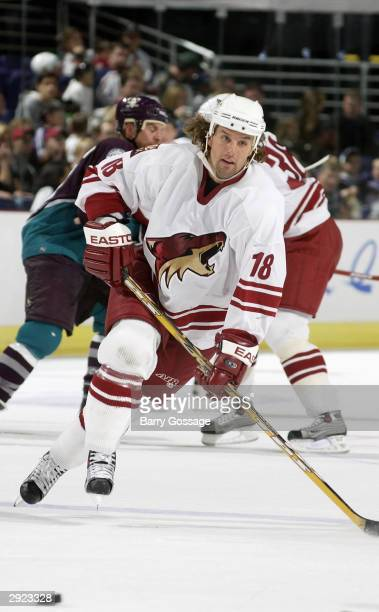 Left wing Tyson Nash of the Phoenix Coyotes moves the puck during the game against the Mighty Ducks of Anahiem on November 8 2003 at America West...