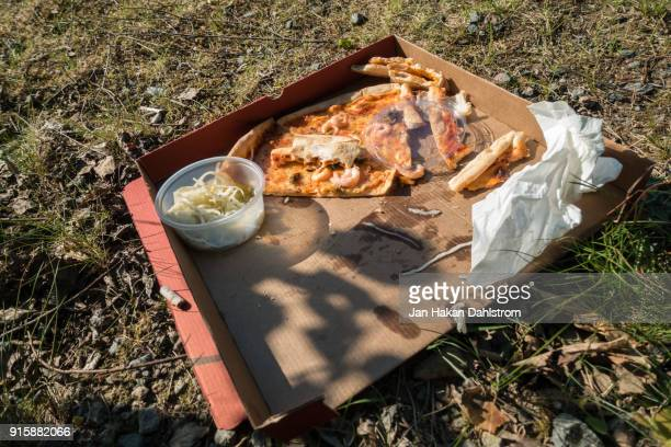 leftovers from pizza picnic - food contamination stock photos and pictures