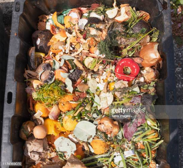 leftovers in compost container - humus photos et images de collection