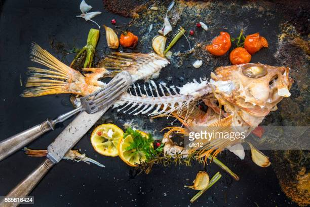 leftovers of redfish - fish skeleton stock photos and pictures