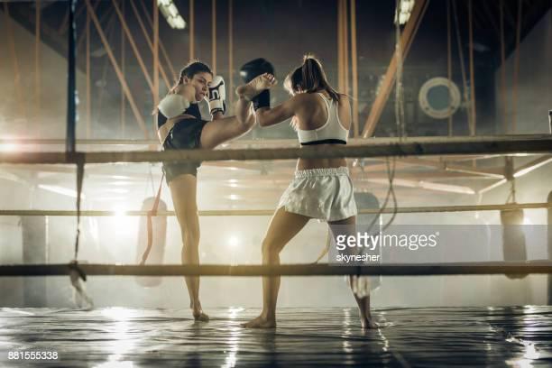 Leg kick on a kickboxing match!