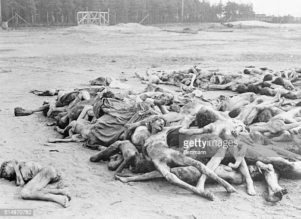 A Few of the Thousands of Dead at Belsen