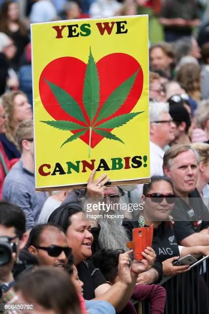 Legalise cannabis supporter holds up a sign as Prime Minister Jacinda Ardern arrives at Parliament after a swearing-in ceremony at Government House...