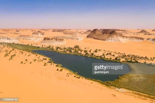 legendärer ounianga-serir-see in der ennedi-region, sahara, tschad - trockenlandschaft stock-fotos und bilder