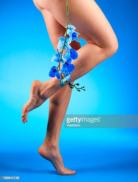 Legs and Blue Orchid