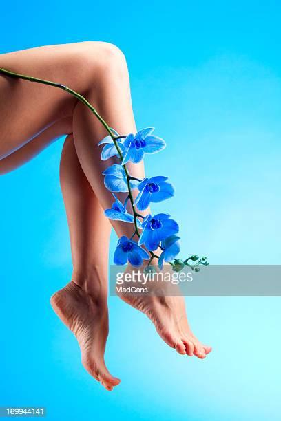 Beine und blaue Orchidee