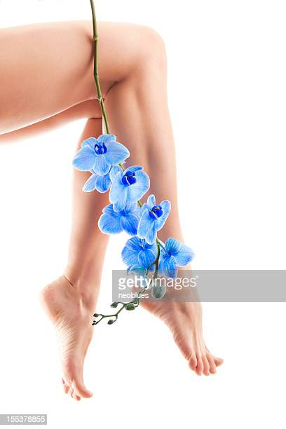 Legs and Orchid