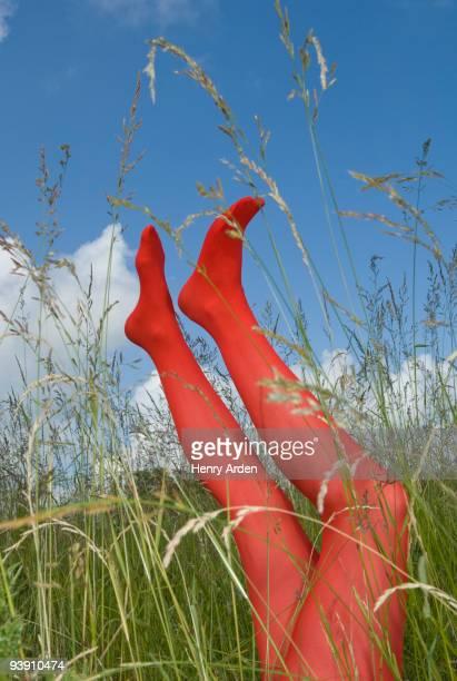legs in long grass - nylon feet stockfoto's en -beelden