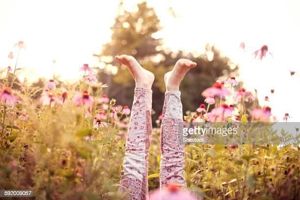 legs of girl sticking up in wildflowers - 自生 ストックフォトと画像