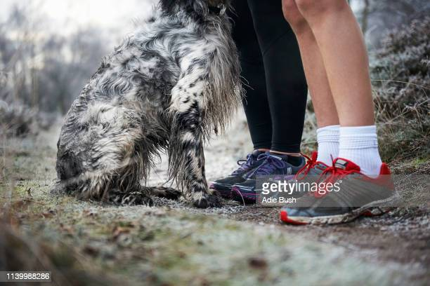 legs of mother and son wearing trainers and sitting dog - bush dog stock pictures, royalty-free photos & images
