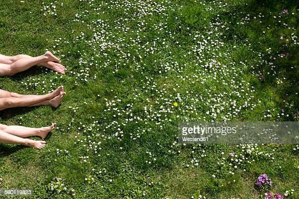 Legs of three people lying in spring meadow