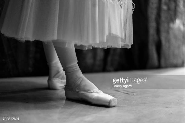 Legs of woman wearing ballet shoes