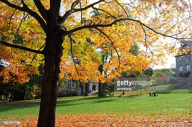 lehigh university in autumn - bethlehem stock pictures, royalty-free photos & images