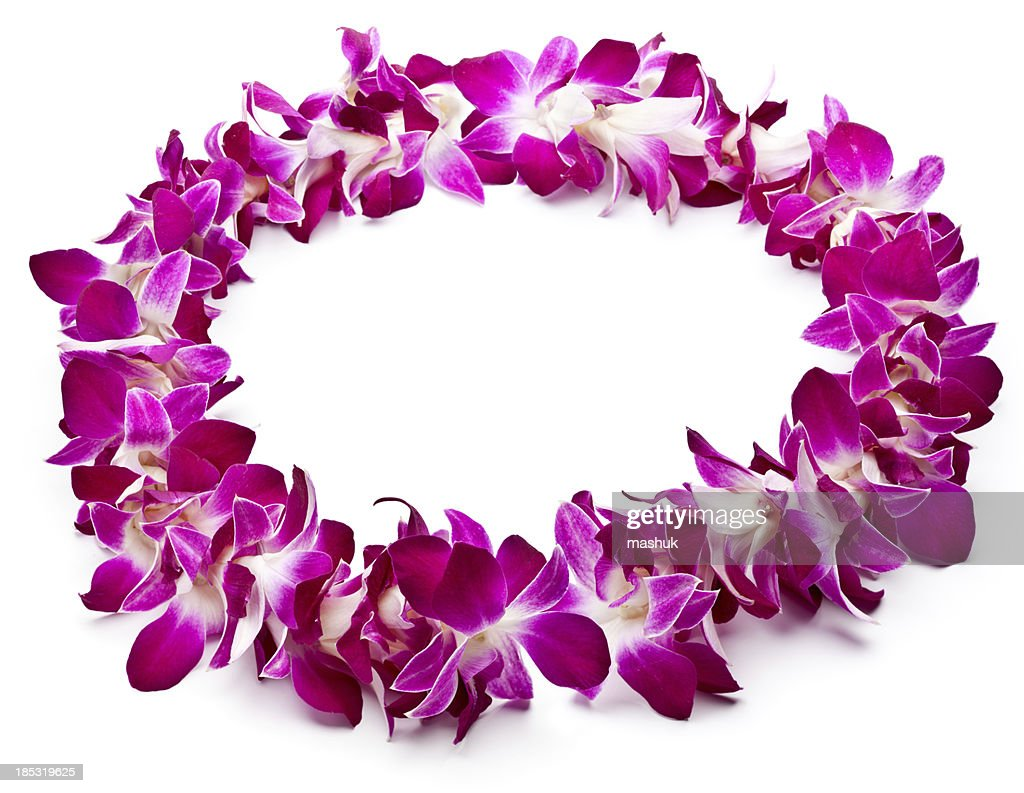 Floral Garland Stock Pictures Royalty Free Photos Images
