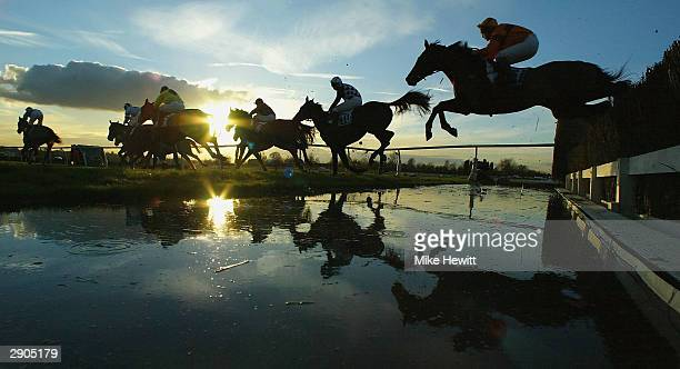 leicester races - horse racing stock pictures, royalty-free photos & images