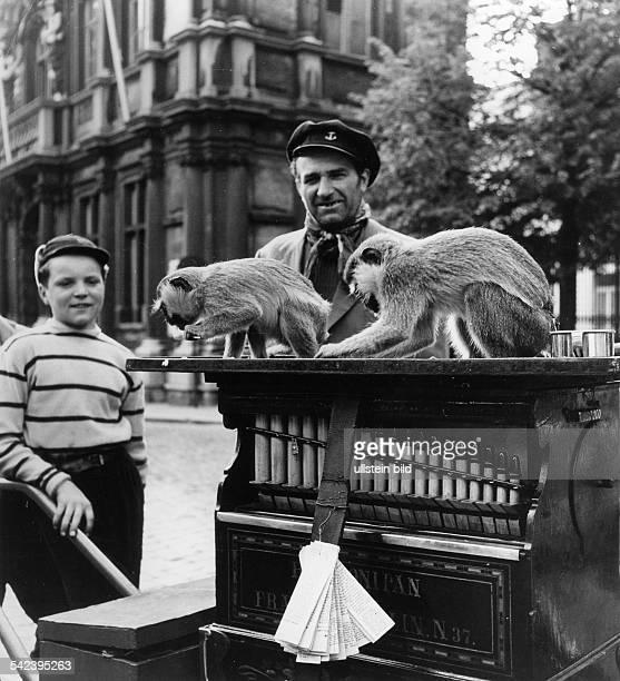 Leierkastenmann mit zwei Äffchen , vermutl. Berlin- um 1960