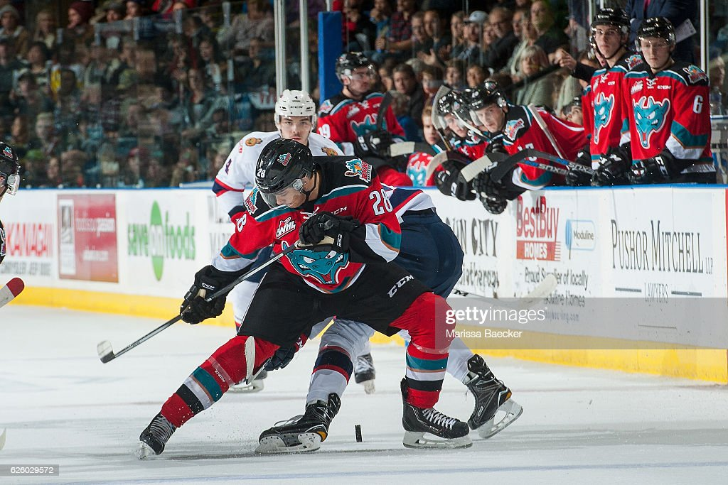 Leif Mattson #28 of the Kelowna Rockets digs for the puck against the Regina Pats on November 26, 2016 at Prospera Place in Kelowna, British Columbia, Canada.