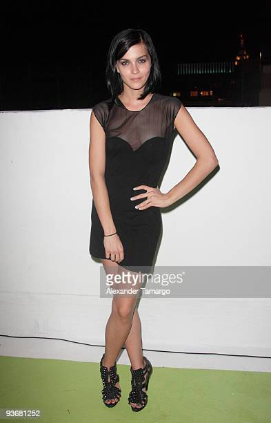 Leigh Lezark of the MisShapes attends the AnOther Magazine's Art Editions launch during Miami Art Basel at the Delano Hotel on December 2 2009 in...