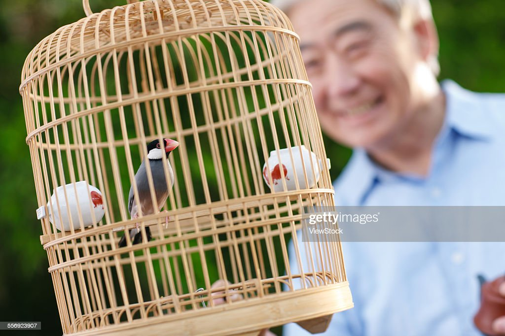 the cage man