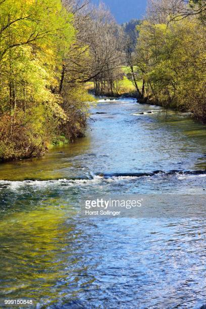 Leitzach river, mountain stream, the course of the river is lined with trees in autumnal coloursan Ash trees (Fraxinus excelsior), Small-leaved Lime trees (Tilia cordata) and Willows (Salix sp), Leitzachtal valley near Fischbachau, alpine upland, Bavaria