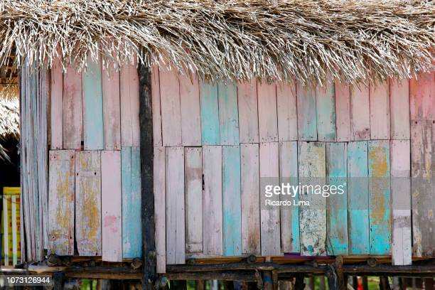 lembe beach, para state, brazil - state stock pictures, royalty-free photos & images