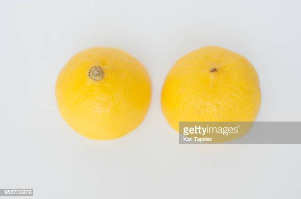 a lemon cut in half against white background - best bosom stock pictures, royalty-free photos & images