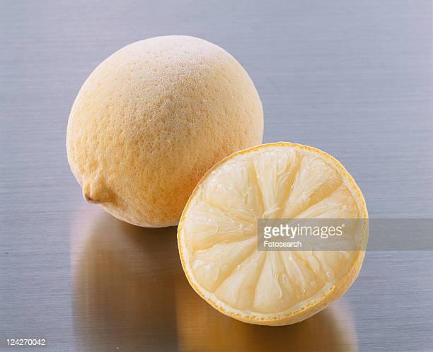 lemon, freezing, - 凍った ストックフォトと画像