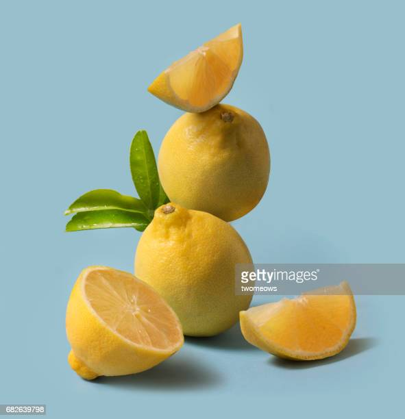 lemon fruit still life. - zitrone stock-fotos und bilder