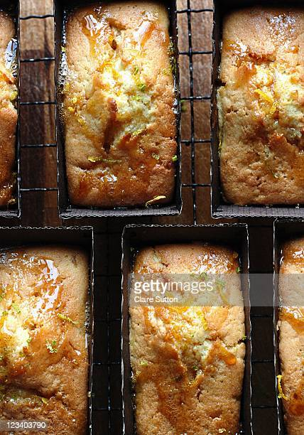 lemon & lime loaves - lemon leaf stock photos and pictures