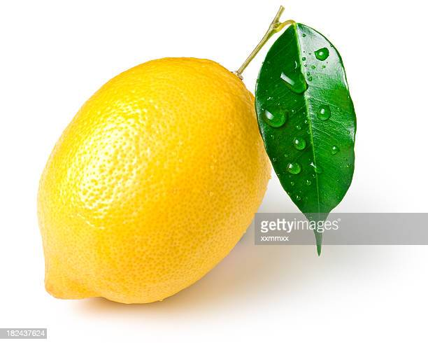 lemon stock photos and pictures getty images