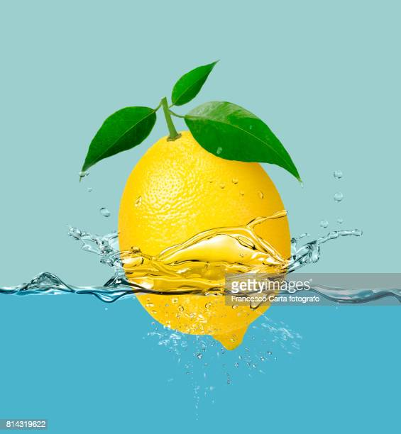 lemon - tempio pausania stock pictures, royalty-free photos & images