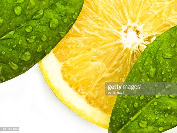 lemon slice and leaves - lemon leaf stock photos and pictures