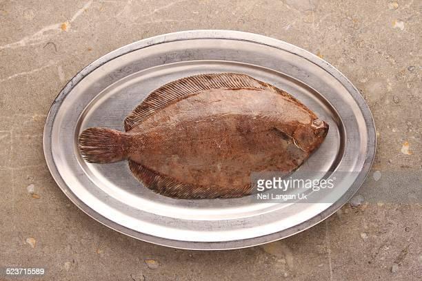 lemon sole on metal platter - フラットフィッシュ ストックフォトと画像