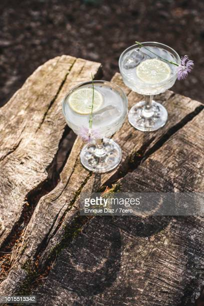 Lemonade in Crystal Champagne Glasses in the Forest.