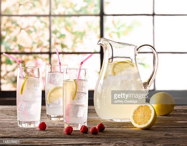 Lemonade with Fruit