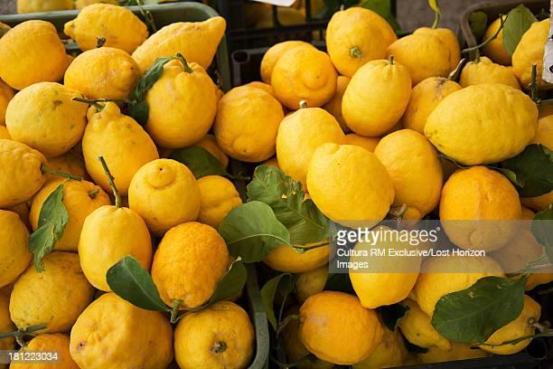 Lemons at the market in the village of Atrani, on the Amalfi Coast, Campania, Italy